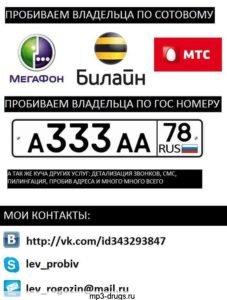 Узнать владельца транспортного средства с помощью интернет ресурсов